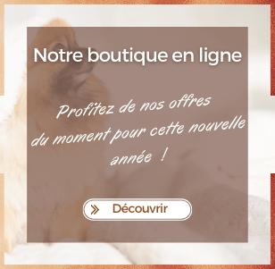 Dogteur - notre boutique E-commerce