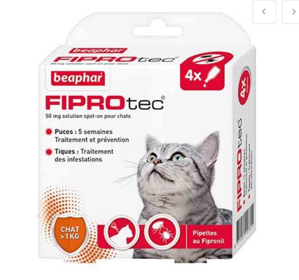 Fiprotec chat 4 pipettes