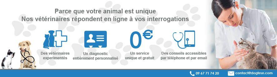Des conseils vétérinaires personnalisés et gratuits !