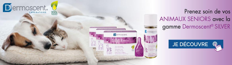 Découvrez la gamme de produits Dermoscent Silver