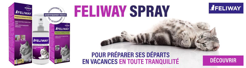 Feliway spray pour les vacances
