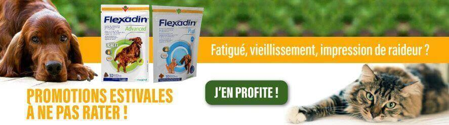 Promotions Flexadin