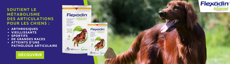 Flexadin Advanced : soutient les articulations de votre chien