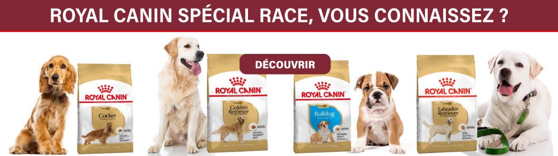 Découvrez la gamme Royal Canin spécial race