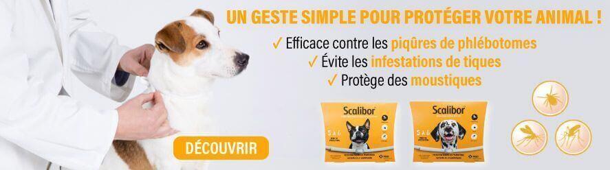 Scalibor protège contre les moustiques et les tiques