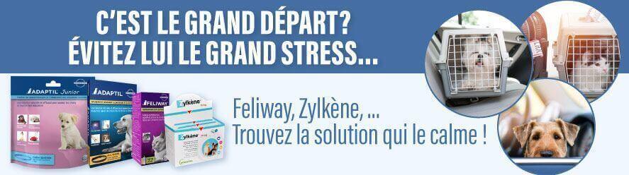 Découvrez nos solutions anti-stress !