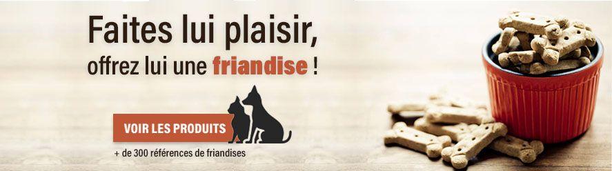 Rubrique friandises