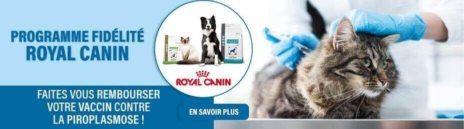 Découvrez notre programme fidélité Royal Canin !
