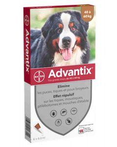 Advantix très grand chien (40 - 60 kg) - 6 pipettes- La Compagnie des Animaux