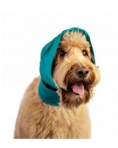 Bandage oreille No Flap pour chien XL