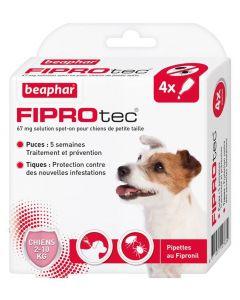 Beaphar Fiprotec petit chien 2 - 10 kg 4 pipettes- La Compagnie des Animaux