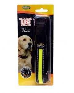Bubimex Collier Led pour chien 22,5 mm x 36-51 cm - La Compagnie des Animaux