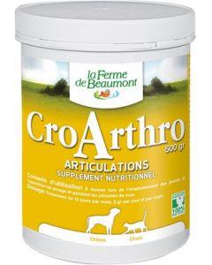 CroArthro 500 g