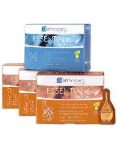 Dermoscent Essential 6 Chien et petits mammifères de 0 à 10 kg - 4 pipettes