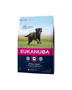 Eukanuba Chien Active Adult Grande Race au poulet 3 kg - La Compagnie des Animaux
