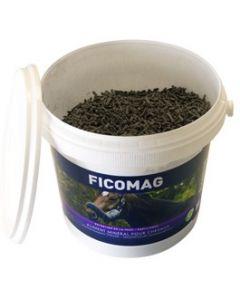 Greenpex Ficomag 1,3 kg