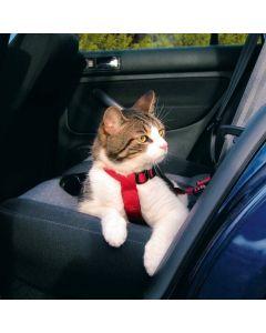 Harnais de sécurité voiture pour chat