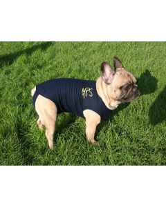 Medical Pet Shirt Chien XS