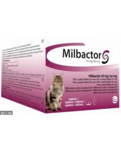 Milbactor Chat plus de 2kg 2 cps