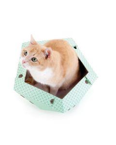 Cat in the Box OLIVER 45 x 43 x 25 cm
