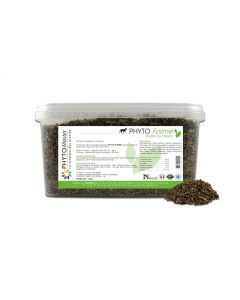 Phyto Master Forme 1 kg - La Compagnie des Animaux