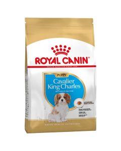 Royal Canin Cavalier King Charles Junior 1.5 kg