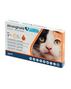 Stronghold Plus - dogteur.com