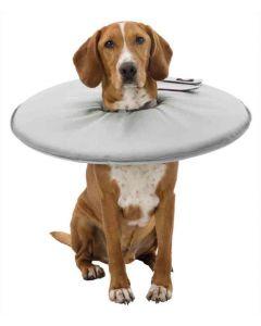 Trixie Collier de protection pour chien XXS-XS- La Compagnie des Animaux