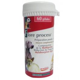 Flore Process 60 gelules - Dogteur