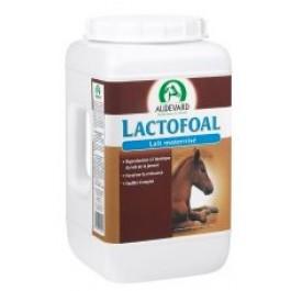 Lactofoal 14 kg - Dogteur