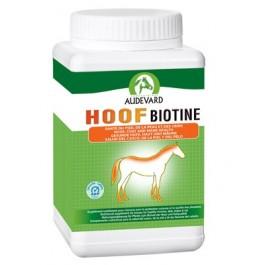 Hoof Biotine 1 kg - Dogteur