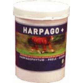 Greenpex Harpago+ 500 grs - Dogteur