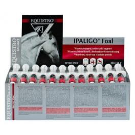 Equistro Ipaligo Foal 48 Seringues - Dogteur