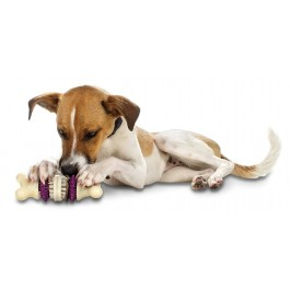 Busy Buddy Jouet Os Bristle Bone taille M - Dogteur