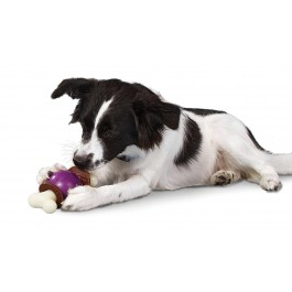Pet Safe Jouet os Bouncy Bone taille L