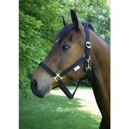 Licol Taille 1 - Poney - Dogteur