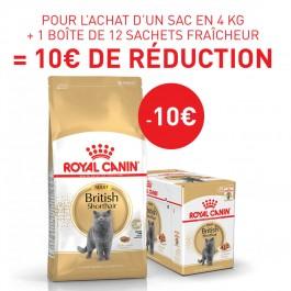 Royal Canin Chat British Shorthair Adult 2 kg - Dogteur