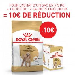 Royal Canin Caniche Adult 7.5 kg - Dogteur