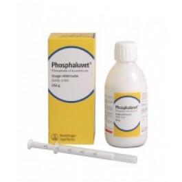 Phosphaluvet - Dogteur