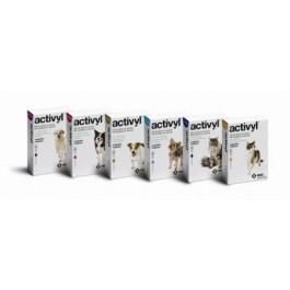 Activyl Petits chats 4 pipettes - Dogteur