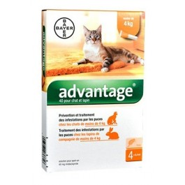 Advantage 40 chat et lapin de 1 à 4 kg - 4 pipettes - Dogteur
