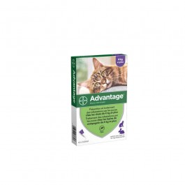 Advantage 80 chat et lapin de plus de 4 kg - 4 pipettes - Dogteur