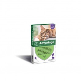Advantage 80 chat et lapin de plus de 4 kg - 6 pipettes - Dogteur