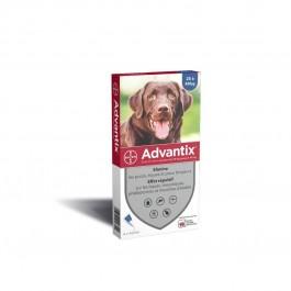 Advantix grand chien (25 - 40 kg) - 4 pipettes - Dogteur
