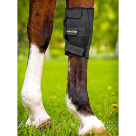 Back On Track Protège Genou gauche pour cheval XL - Dogteur