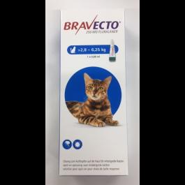 Bravecto Spot-On CHAT 2,8 - 6,2  kg 1 pipette - Dogteur