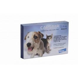 Capstar 11.4 mg pour chat et petit chien - Dogteur