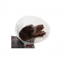 Carcan classique pour chiens et chats - 35 cm - Dogteur