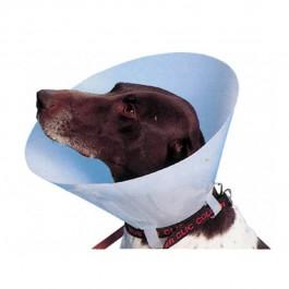 Carcan classique pour chiens et chats - 30 cm - Dogteur
