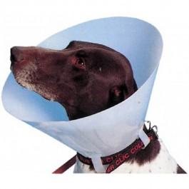 Carcan classique pour chiens et chats - 25 cm - Dogteur